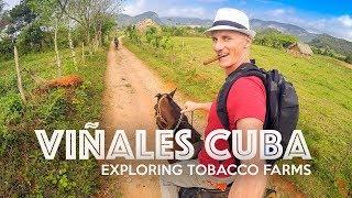 VIÑALES FARM ADVENTURE - Cuba
