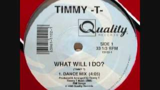 Watch Timmy T What Will I Do video
