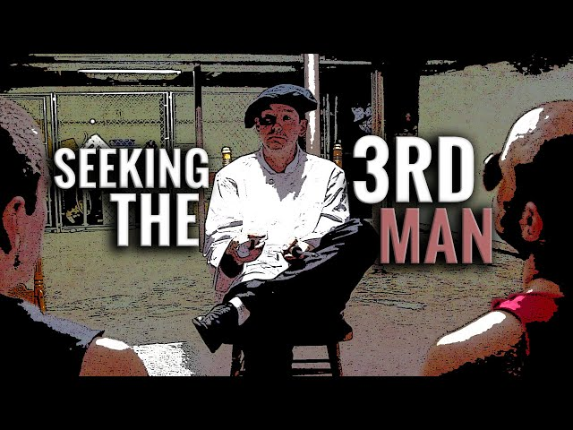 The Following Announcement - Seeking The Third Man