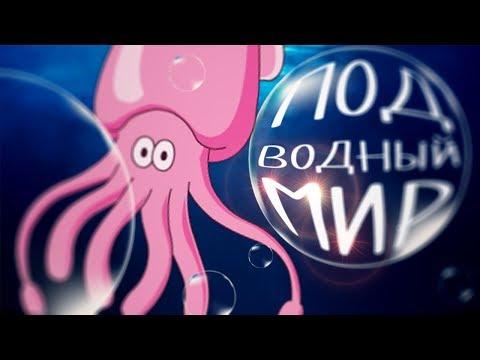 Подводный мир мультфильм