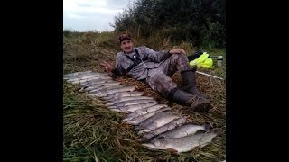 Жор щуки в конце сентября. Самая лучшая рыбалка.(Рыбалка на щуку в конце сентября. Попали на сброс воды и после обеда был выход щуки. Брала практически на..., 2016-11-04T10:17:18.000Z)