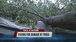 Who pays when a tree falls on your car or home?