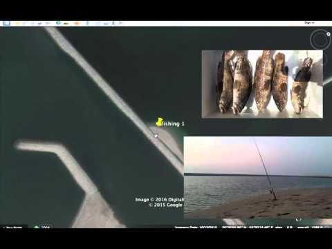 Best Place For Fishing In Uae Al Hamriya