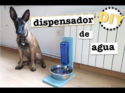 Como hacer un dispensador de agua para mascotas for Dispensador de comida para perros