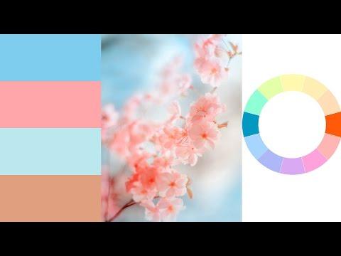 Лучшие сочетания цветов. Основы цветовой гармонии + тонировки. JenyTalkRu