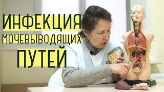 иМП - Инфекция мочевыводящих путей