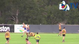Senior Match Highlights vs Sandringham - Practice Match 1