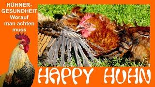 Happy Huhn Folge 9: Gesundheitscheck bei Hühnern - Krank oder Gesund? (Kalkbeine bekämpfen Milben)