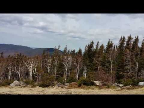 Cog Railway tour on Mount Washington