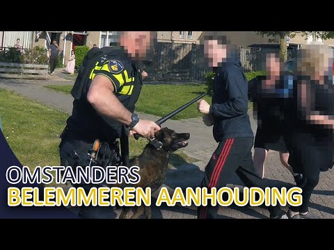 POLITIE - Omstanders