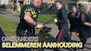 POLITIE  Omstanders belemmeren aanhouding  Inzet politiehond  Politie Almere