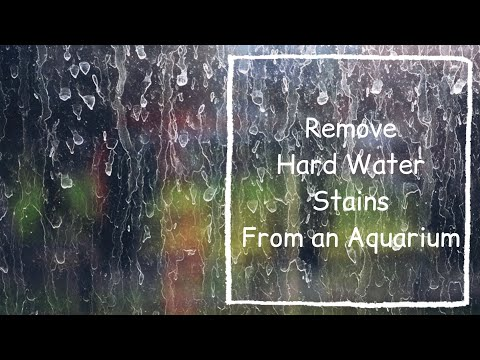 | DIRTY AQUARIUM | HARD WATER STAINS | CALCIUM DEPOSIT WHITE STAINS  | DIRTY GLASS | LIMESCALE |