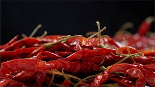 Pan shot of red chilies heap - Lal Mirch (Hot Indian Spice)