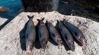 Гости из Москвы  Рыбалка на реке  Часть первая
