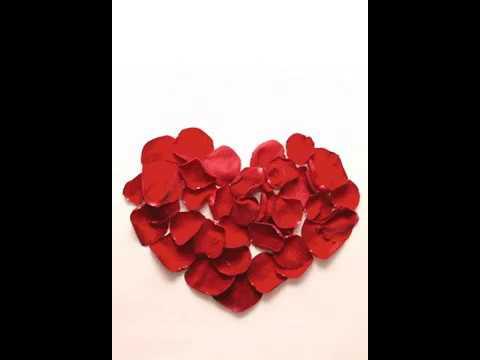 Love GIF 💕 Romantic Love Live Wallpaper with Sound