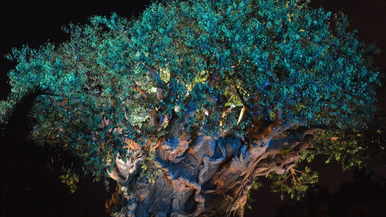 Avatar Blue Lion King Twinkling Lights On Tree Of Life At Disneys Animal Kingdom Harambe Nights