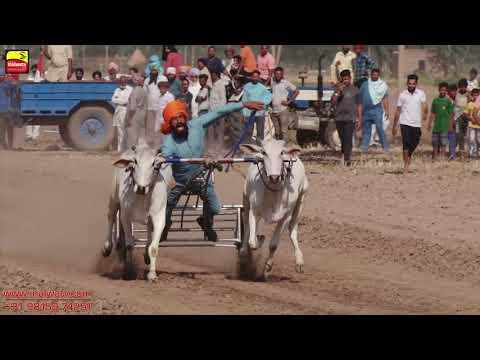 KUTHA KHERI (Patiala) ਬੈਲ ਗੱਡੀਆਂ ਦੀਆਂ ਦੌੜਾਂ / OX RACES [ May-2019 ] 🔴 Shift 1 || Part 1st