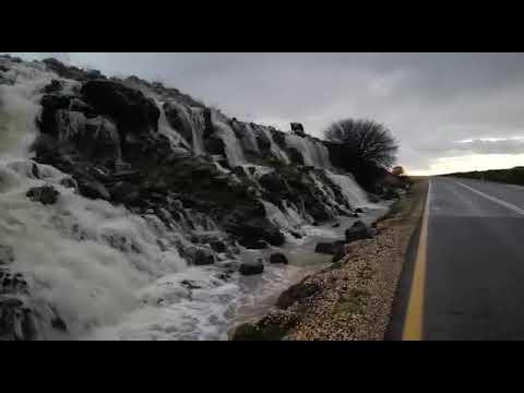 מפל שנוצר מגלישה של מאגר דבש בגולן ליד שמורת גמלא - 17/01/2019