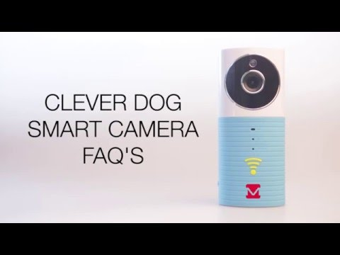 Complete Guide to Clever Dog Smart Camera - MyMemory Blog