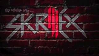 Skrillex Ft David Guetta   This Is Song UNRELEASED 2013