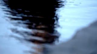 Teaser III / Μετακίνηση 7 / Άντζελα Μπρούσκου