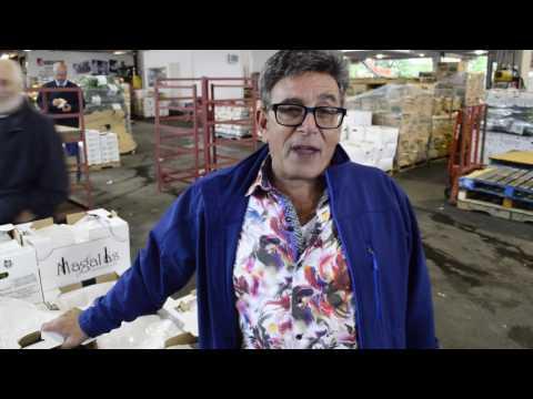 Bamford Produce Fresh Ontario - Episode 1