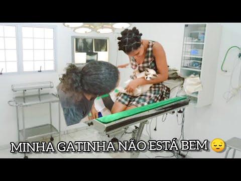 MEU SABÁDO , CASTREI A GATA , MAS ELA NÃO TÁ BEM 😢|Rê Santos