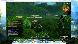 Final Fantasy XIV on Mac (10.8.0 Mountain Lion)