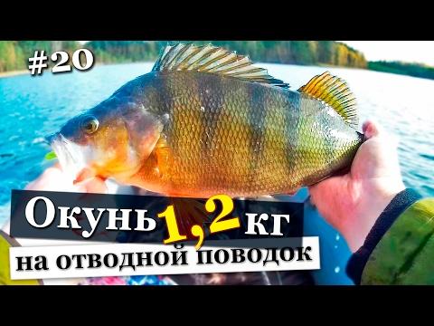 рыбалка осенью в ленинградской области