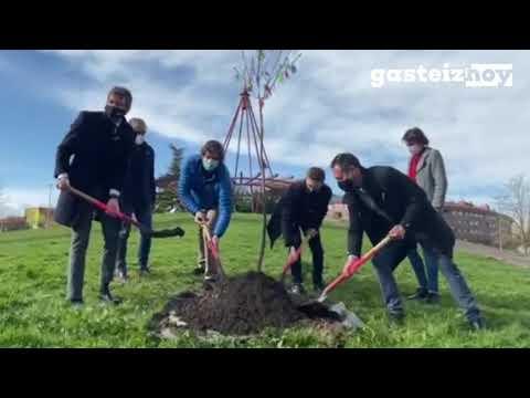 Aspanafoa planta un árbol en Vitoria-Gasteiz contra el cáncer infantil