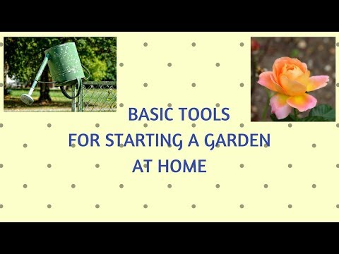 Basic Tools for Starting a Garden at Home