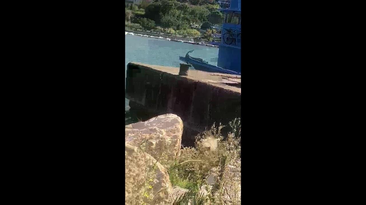 Denize atık boşaltan kamyon sürücüsü hakkında işlem başlatıldı