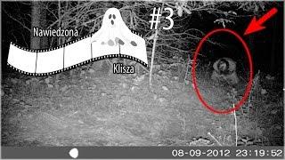 Nawiedzona klisza #3: Tajemnicza postać w lesie, duch dziewczynki, nawiedzony sklep z zabawkami.