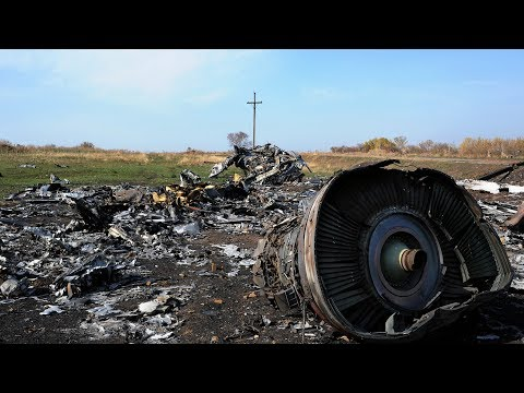 Liow: MH17 perpetrators could be charged by end of the year