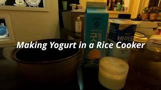 밥솥으로 요거트 만들기 | Making Yogurt i…
