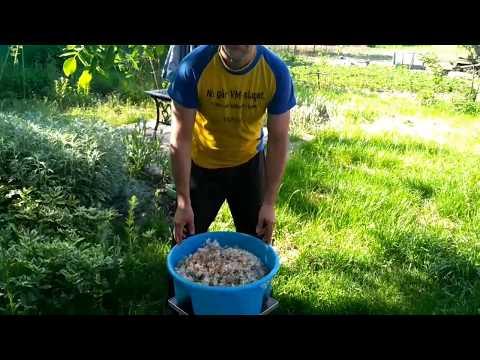 Как сделать настойку боярышника в домашних условиях