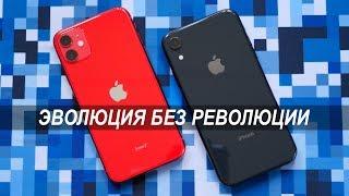 Сравнение iPhone 11 и iPhone Xr: зачем платить меньше? Что выбрать iPhone Xr или iPhone 11?