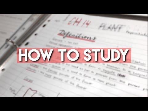 How to Study for Exams // Junior Cert & Mocks //  Anna Lenkovska