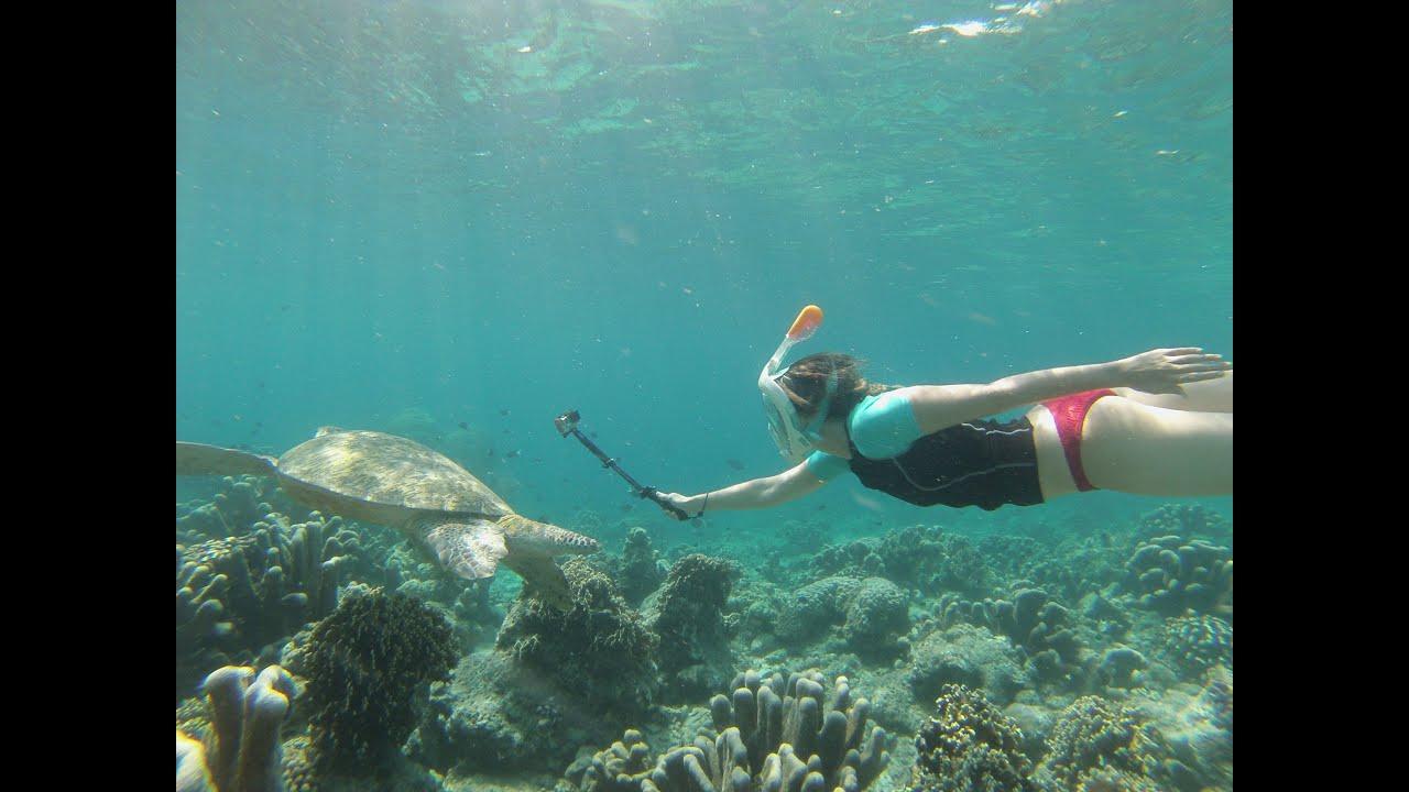 snorkel gopro