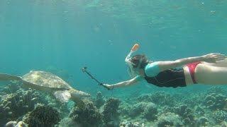 GoPro Snorkel Sipadan