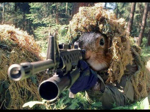 Captain Jack❤️  - In the army now💂 ( Chipmunks ▶️remix )