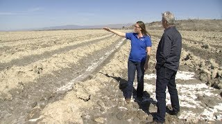 New Project Takes Aim At Controlling Salton Sea Dust