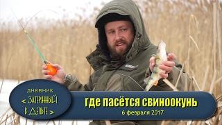 Рыбалка в Астрахани. Последний лед. Ловля окуня на балансир.