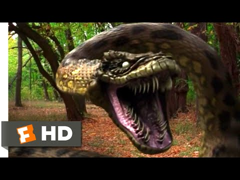 Anacondas: Trail of Blood (2009) - Jeep vs. Anaconda Scene (3/10) | Movieclips