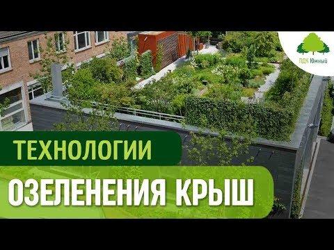 Зеленая кровля. Технология озеленения и посадки газона на крыше