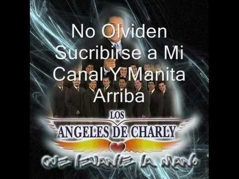 Los Angeles de Charly Que levante la Mano(Letra)