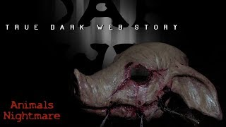 True Dark Web Stories That Actually Happened (Very Scary! Don't Watch Before Bed)