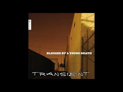 Glen Porter - Transient