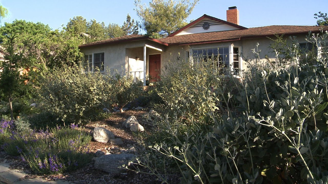 Native Garden Design Elements - California Native Garden ...