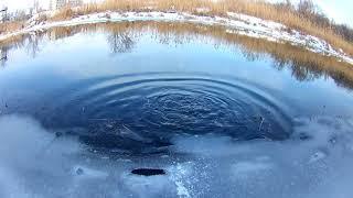 Ловля щуки в р.Лугань,в зимний период.